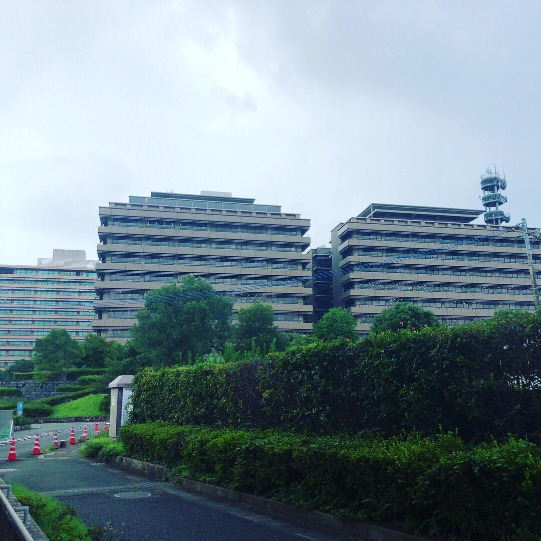 熊本市内二泊三日の旅